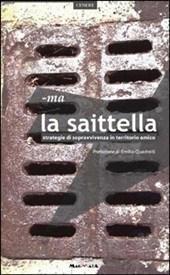 cover La saittella